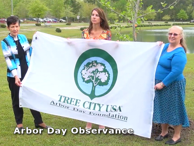 Tree City USA sign being held