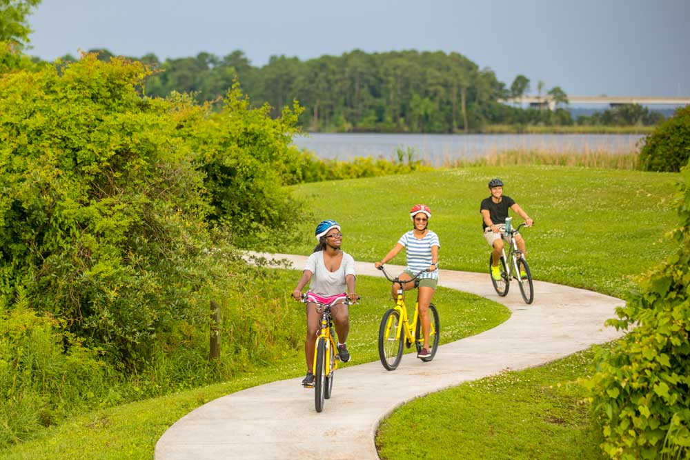 Jacksonville Friends Biking