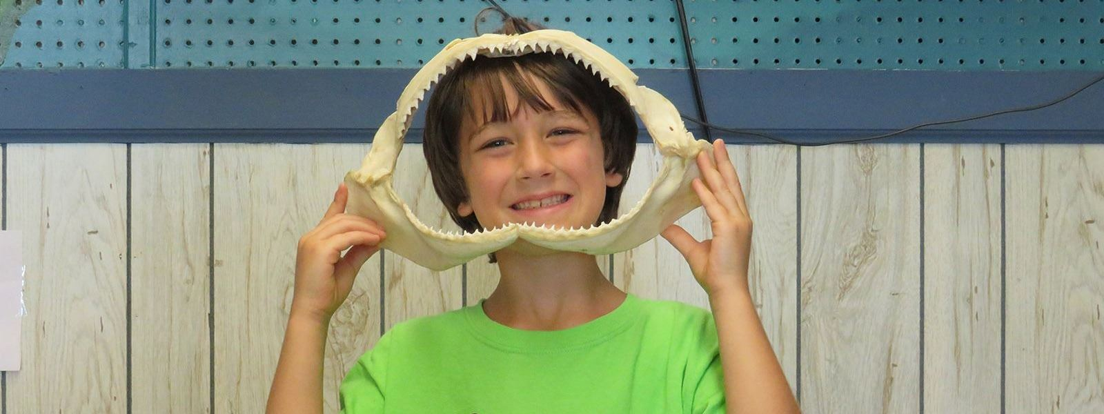 summer camp participant holding sharks teeth