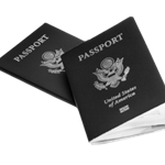 passport-bw.png
