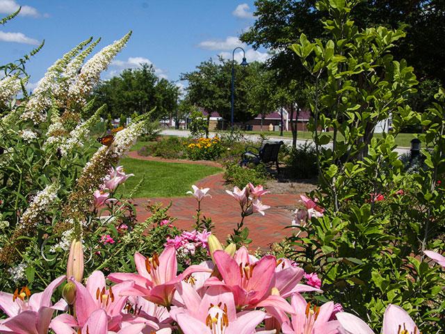 Park Jacksonville Nc Images