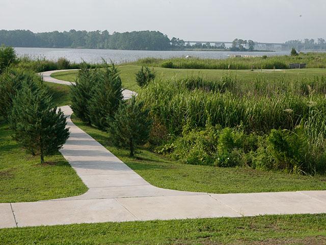 - Landscape Jacksonville Nc