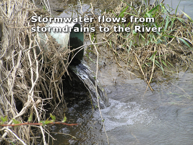Stormwater Testing and Education