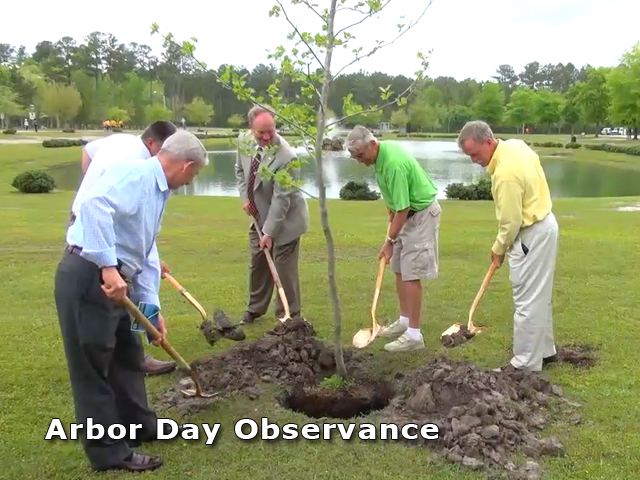 Mayor, City Council members and City Staff plant a tree.